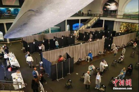 资料图:当地时间4月23日,位于纽约的美国自然历史博物馆开辟米尔斯坦海洋生物大厅为新冠疫苗接种点,为18岁以上的纽约居民接种新冠疫苗。中新社记者 谭宏伟 摄